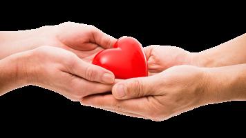 organ-donation-S